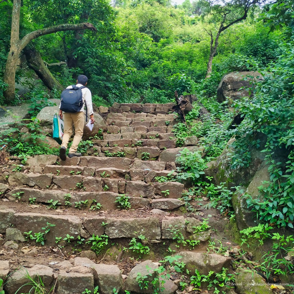 Steps in the third hill